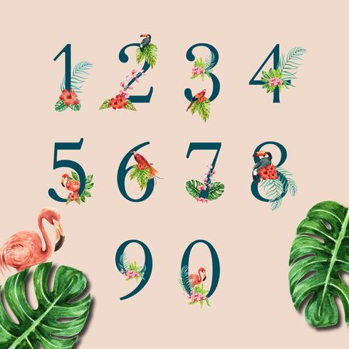 tipografia design primavera com o conceito de folhagem de plantas, design criativo de ilustração vetorial aquarela