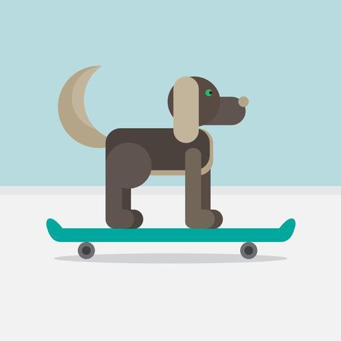 Cane seduto su uno skateboard