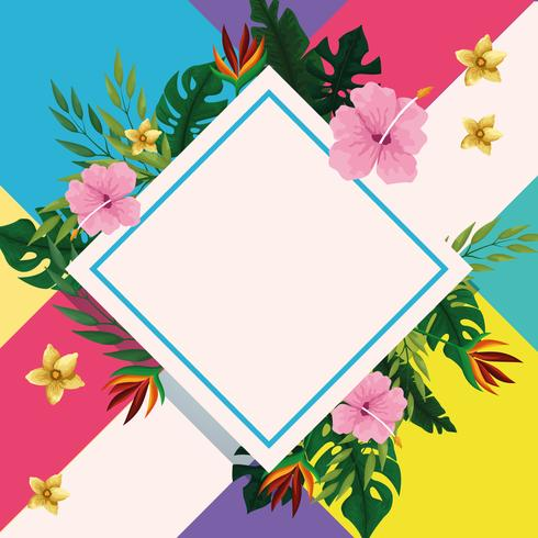 Summer diamond frame with tropical flowers
