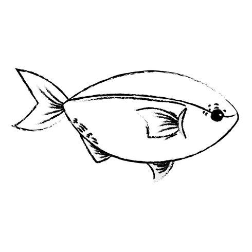 figura deliciosos peixes de frutos do mar com nutrição natural