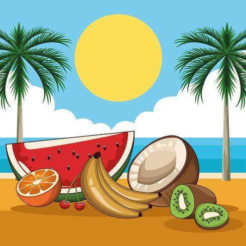 tropical fresh fruits vector