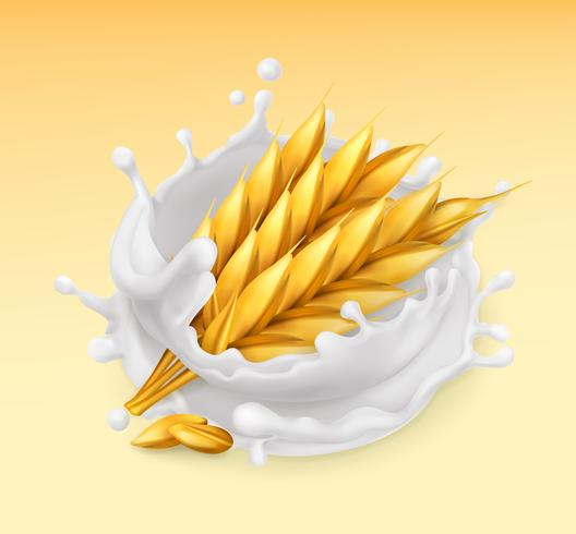 Weizen und Milch platschen. Gerste