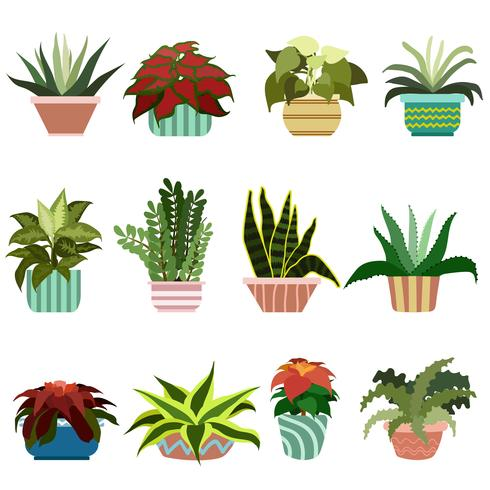 Diverse Flowers In Pots Set vector