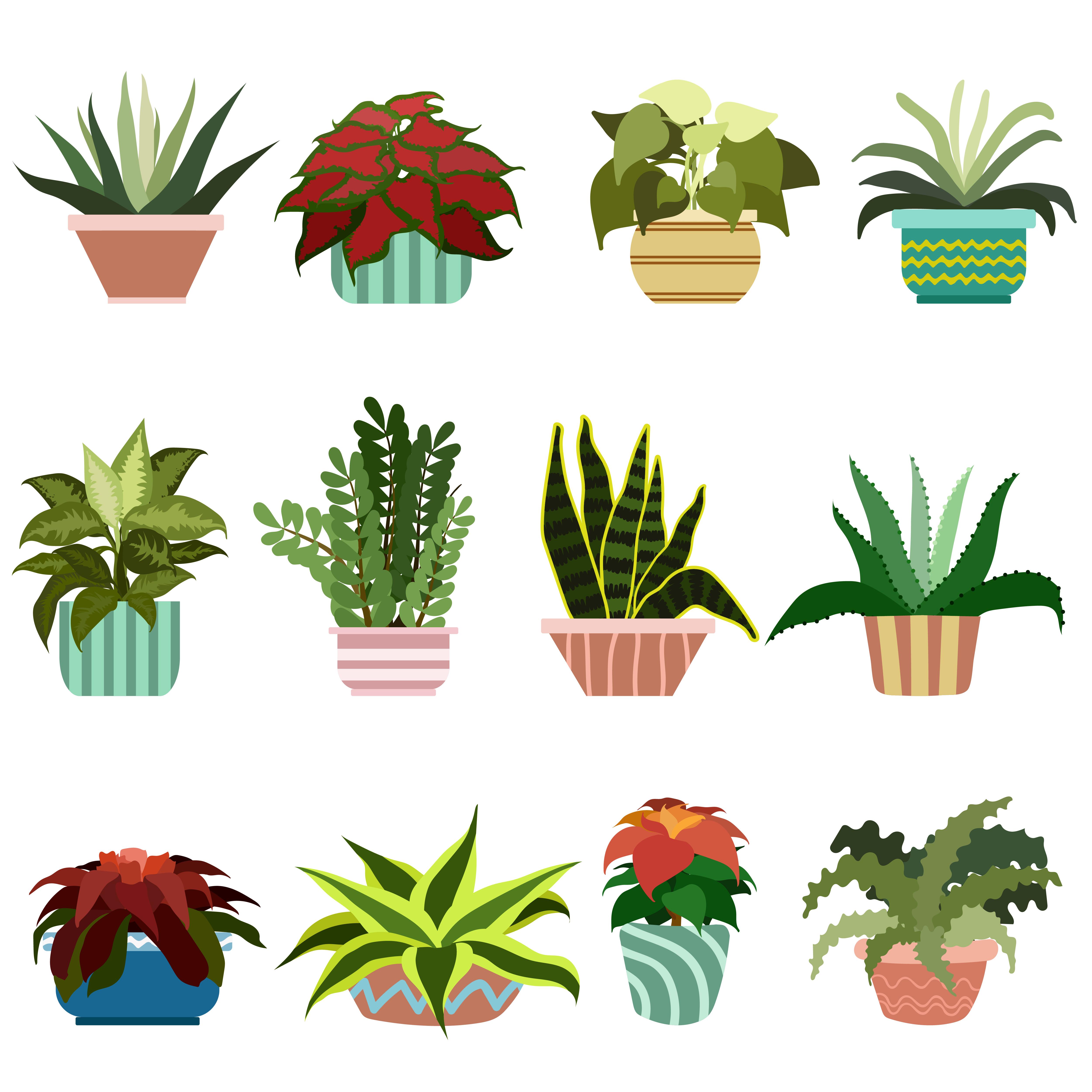 Diverse Flowers In Pots Set - Download Free Vectors ...