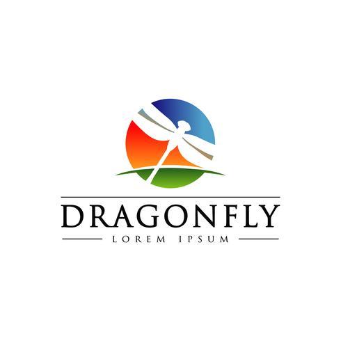 Dragonfly Met Kleurrijke Sky Horizon