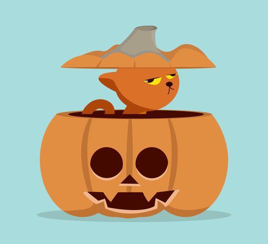 Cartoon  cat in pumpkin