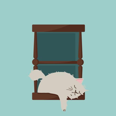 chat dort à la fenêtre