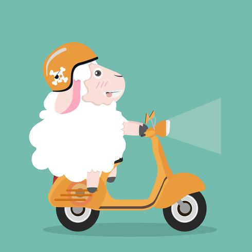 Cute sheep  in helmet riding a yellow scooter