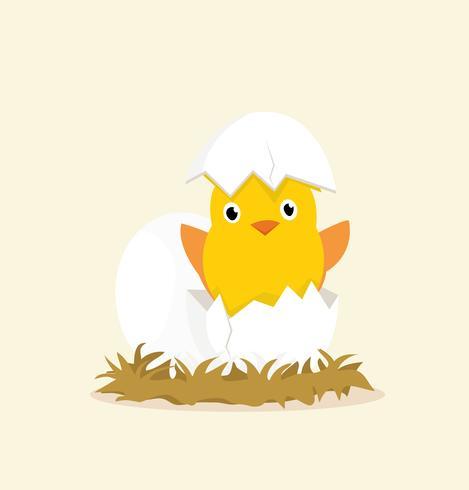 eieren kuikens vector