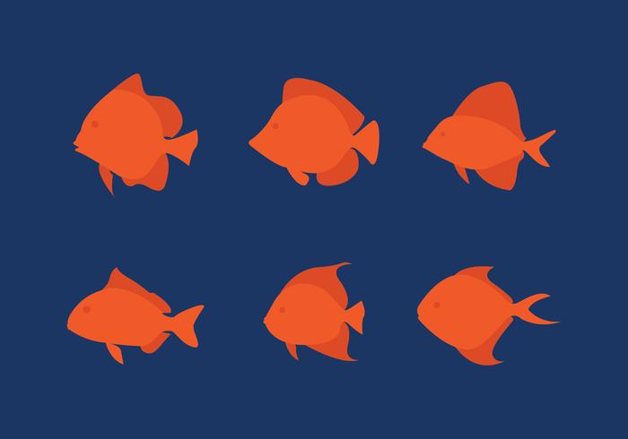 Set di pesce piatto vettoriale