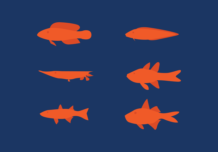 Set de poisson plat Vector