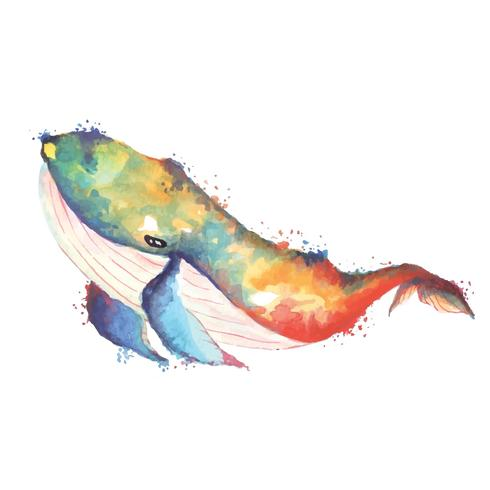 desenho aquarela de baleia vetor
