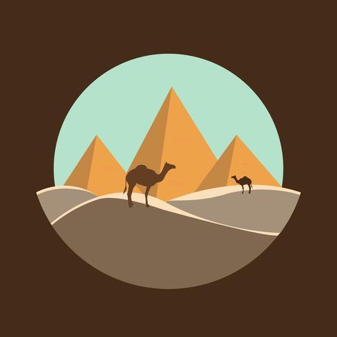 cammelli vicino Egitto piramidi paesaggio