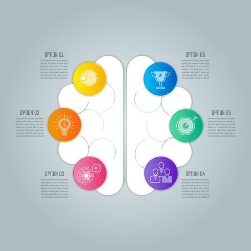 Affärsidé för hjärninfographic design med 6 alternativ, delar eller processer.