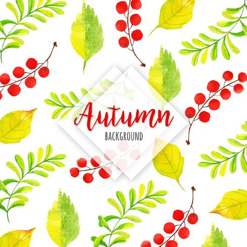 Red Berry Beautiful Watercolor Autumn Leaves Background