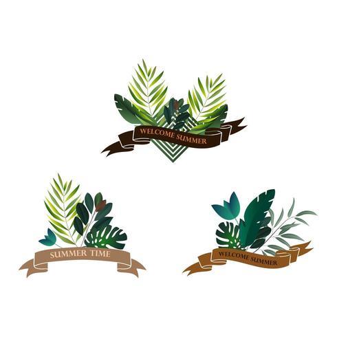 Conjunto de cintas tropicales vector