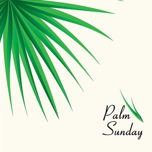 Palm Sunday Background with Palm leaves vector