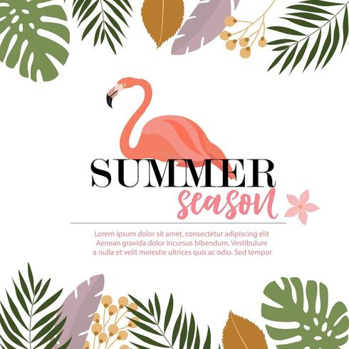 Flamingo Summer card design vector