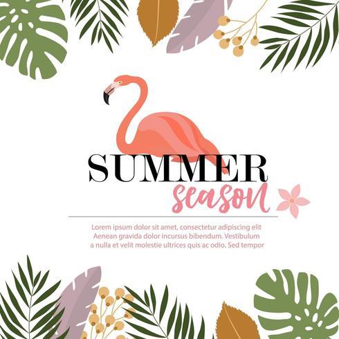 Flamingo sommarkortdesign