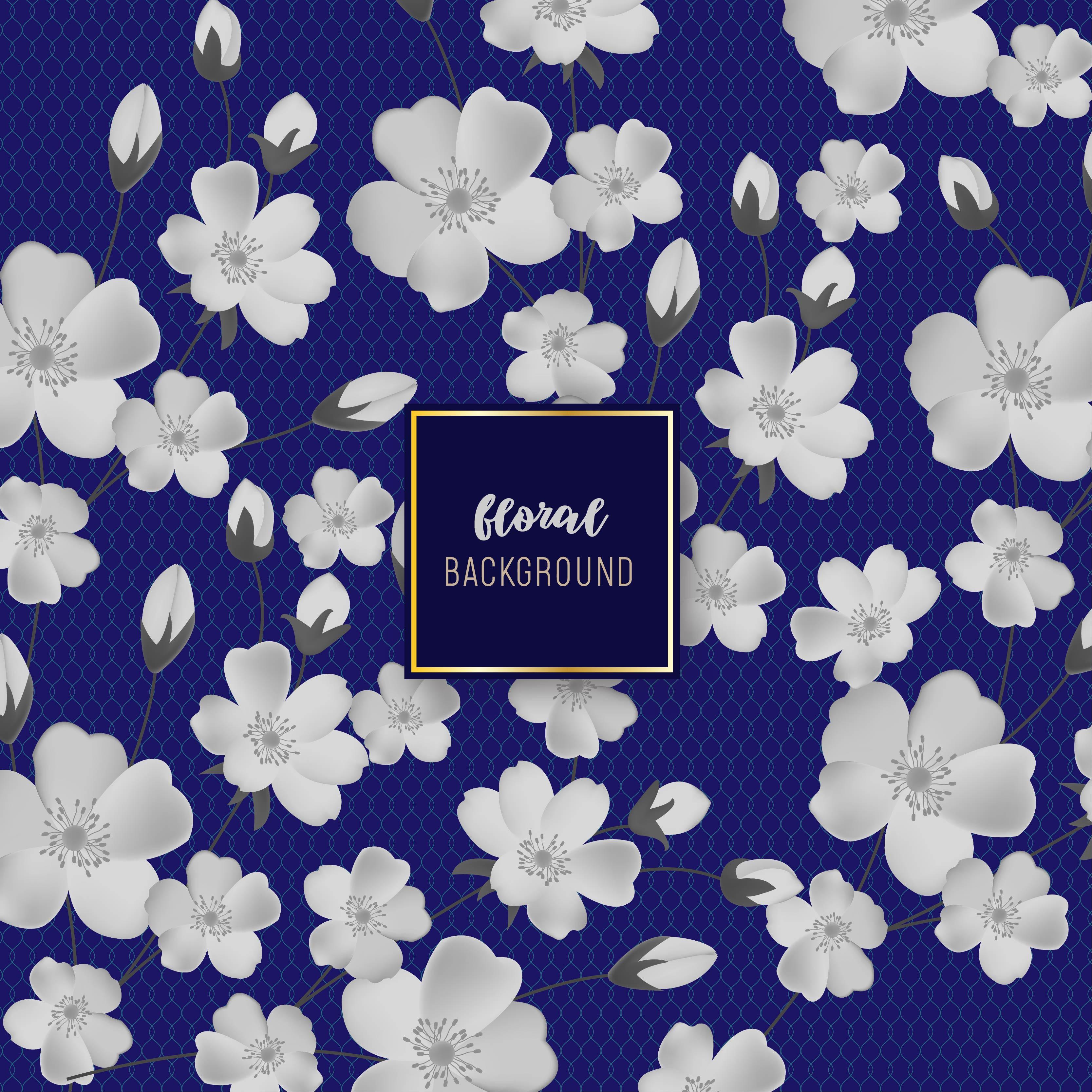 White Flower And Navy Backdrop Floral Background Design Download