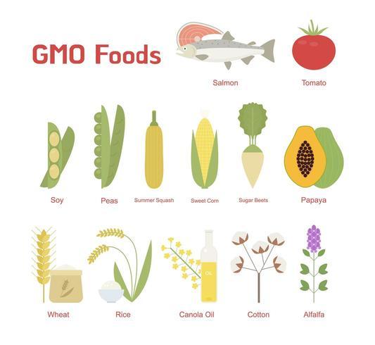 Repräsentative Lebensmittel, die häufig manipuliert werden.