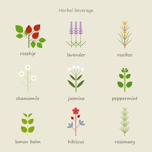 Types of herbal tea.