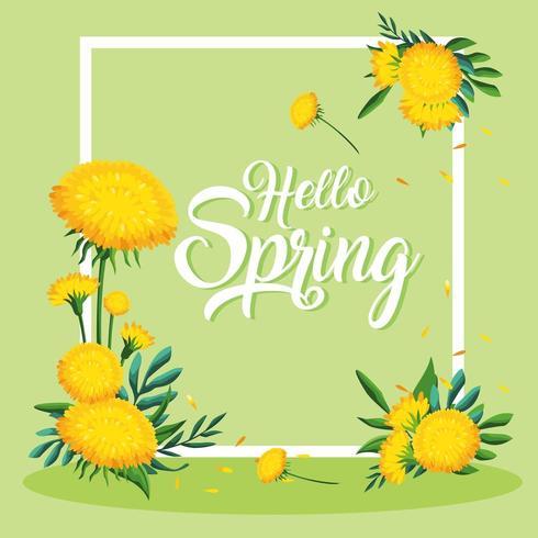 hello spring frame