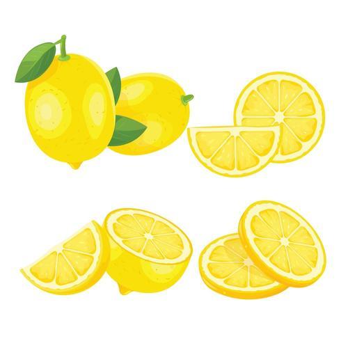 Set of Yellow Lemons