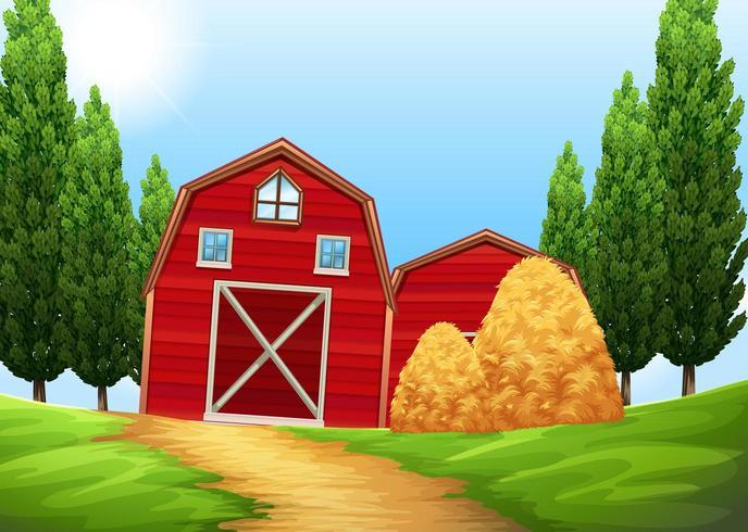 Granges et meules de foin dans les terres agricoles
