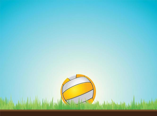 Volleyball sur l'herbe