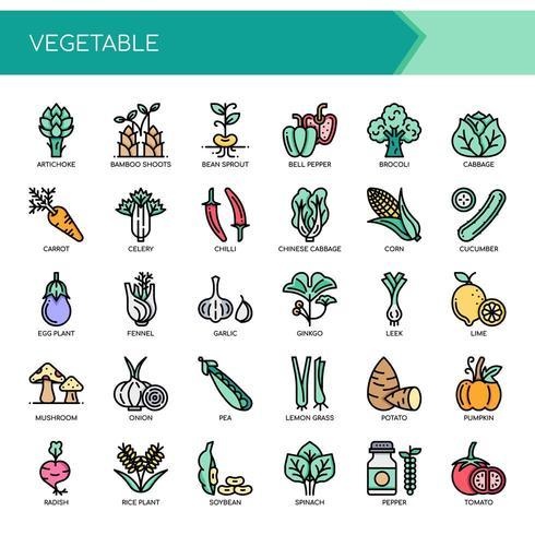 Insieme delle icone e degli elementi di verdure di linea sottile di colore
