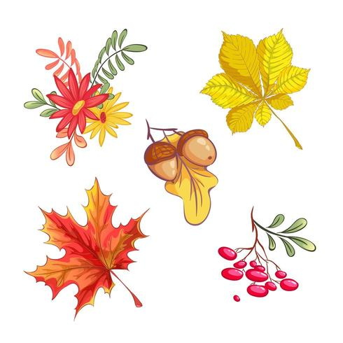 Set of autumn natural elements vector