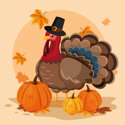 turkey with pumpkins and hat pilgrim of thanksgiving day vector