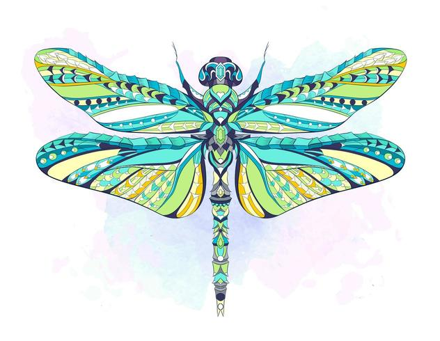 Colorful patterned dragonfly on grunge background vector