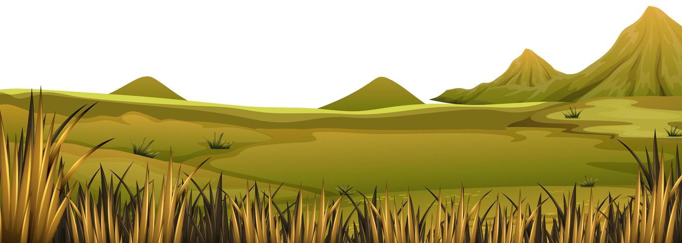 Paysage naturel herbeux vecteur