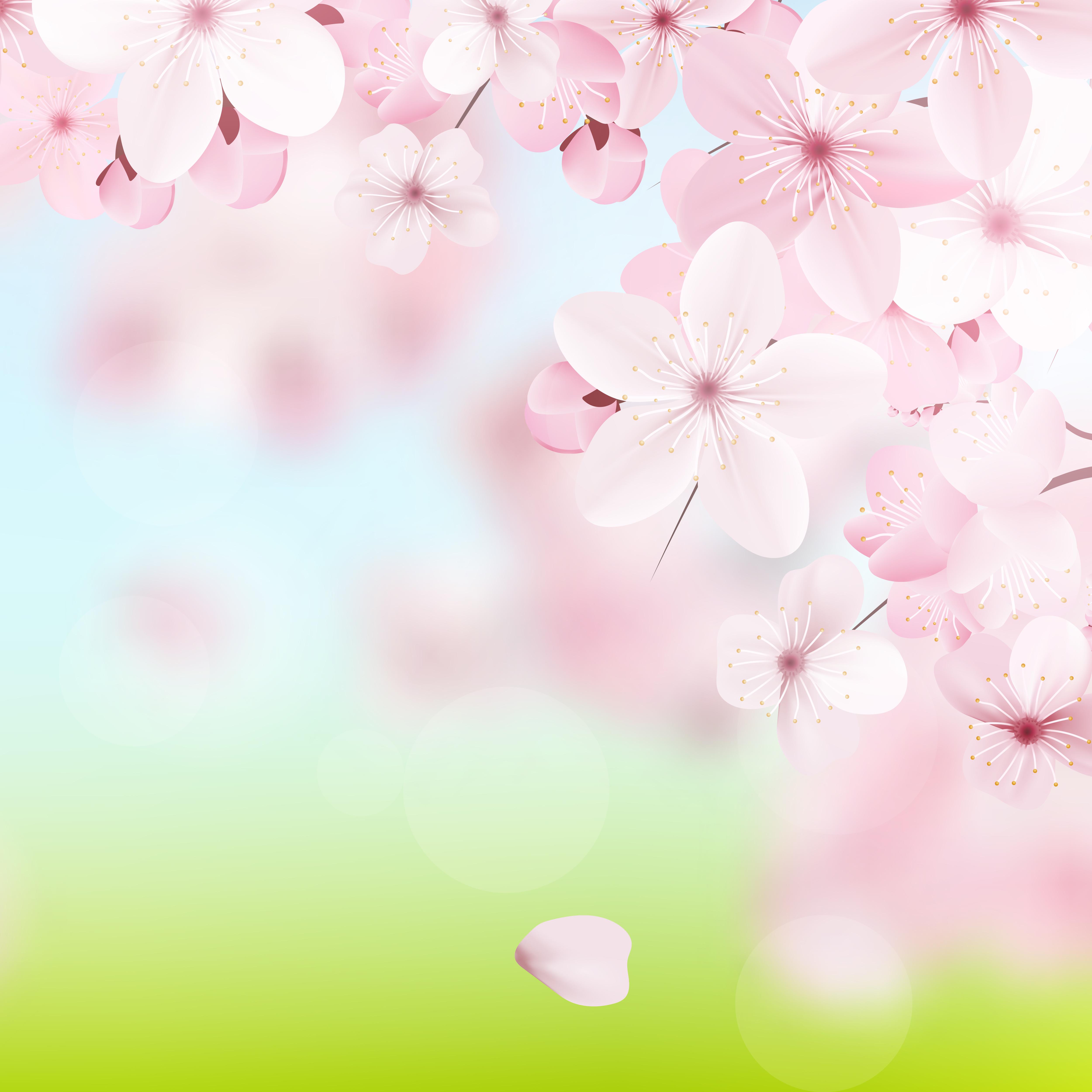 Delicate Floral Background Design Download Free Vectors