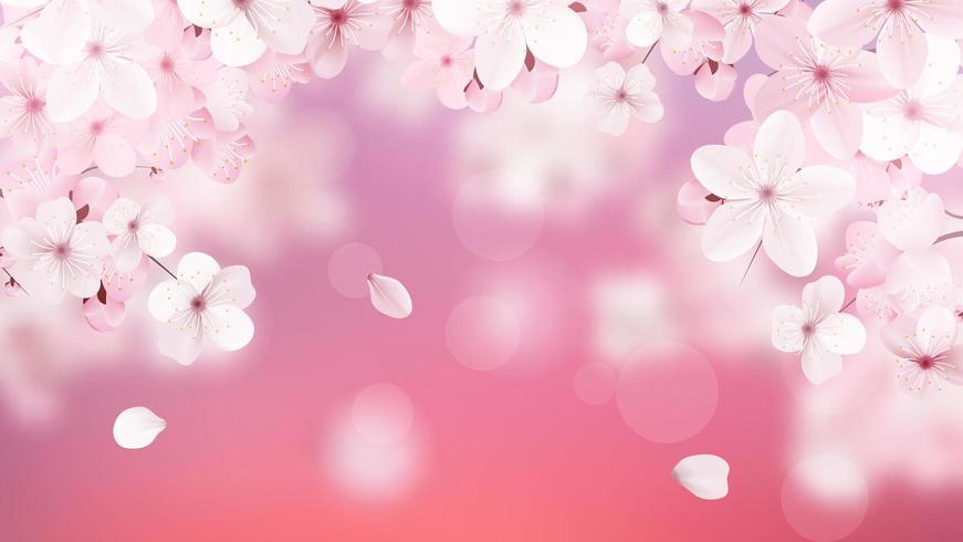 Delicate floral design vector
