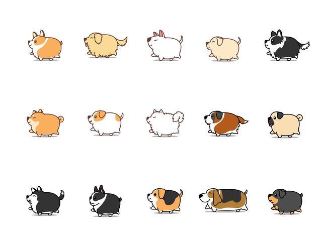 Perro gordo caminando conjunto de iconos de dibujos animados, ilustración vectorial vector