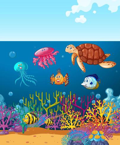 Sea animals swimming under the ocean in coral reef