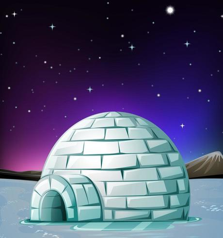 Scene with igloo at night vector