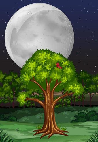 Escena de la naturaleza con árbol y luna llena en la noche vector