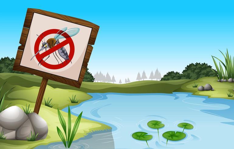 Escena con estanque y sin signo de mosquitos vector