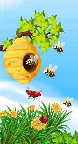 Bijen en insecten vliegen rond bijenkorf