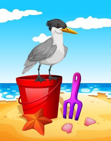 Gaivota em pé no balde vermelho na praia