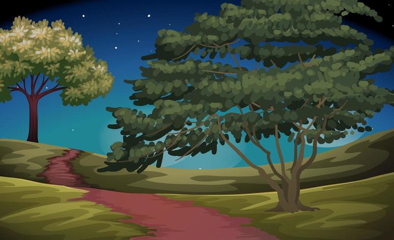 Escena de la naturaleza del campo en la noche