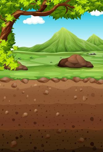 Escena de la naturaleza con campo y subterráneo vector