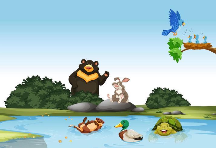 Animali nel fiume e sulla roccia vettore