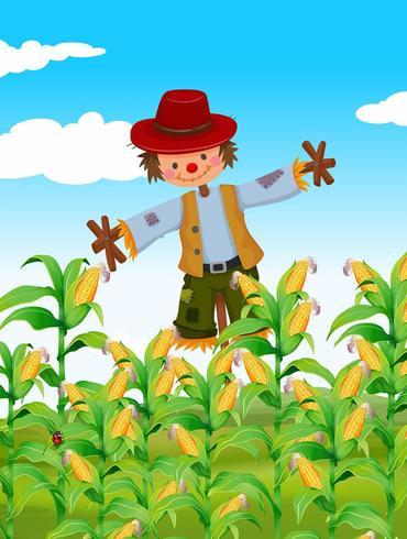 Espantapájaros de pie en el campo de maíz vector