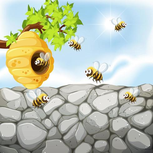 Abelhas voando ao redor da colméia perto da parede