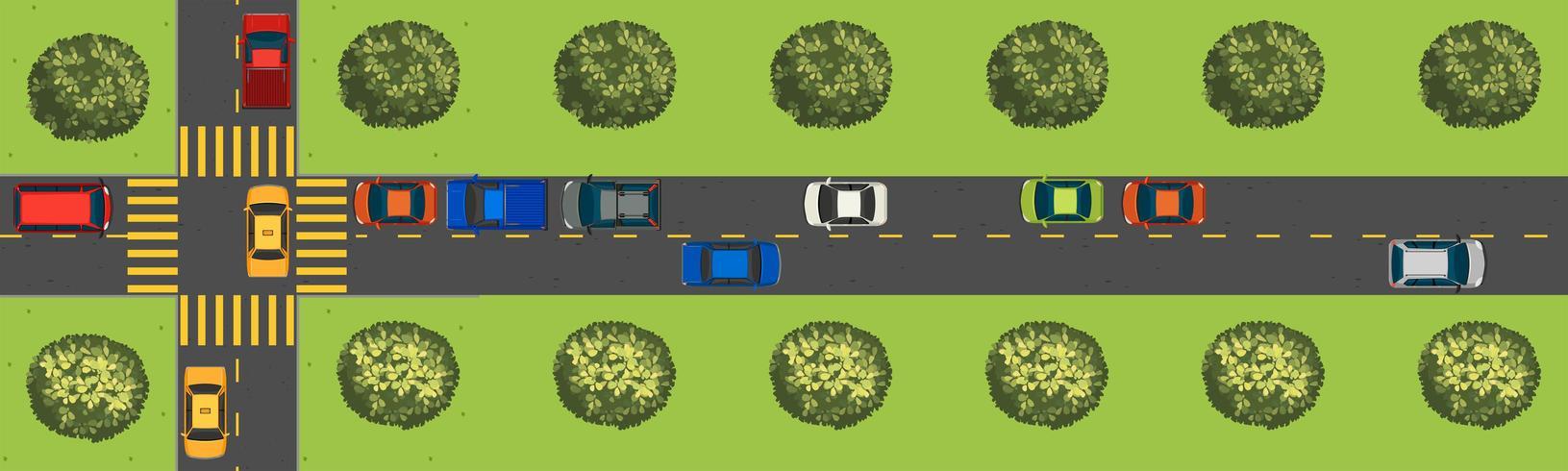 Ovanifrån scen med bilar på vägen